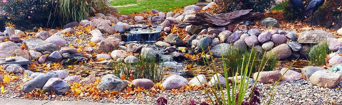 pond-panoramic